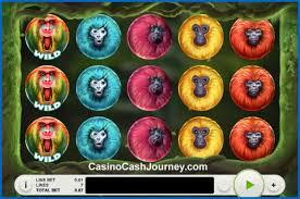 7Monkeys Colorful SLot
